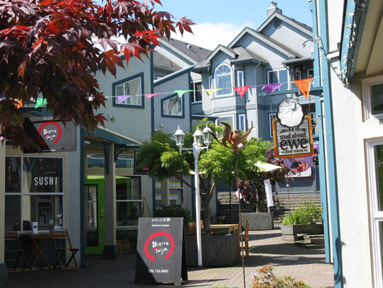 Photo of Fitzwilliam Street shops in Nanaimo