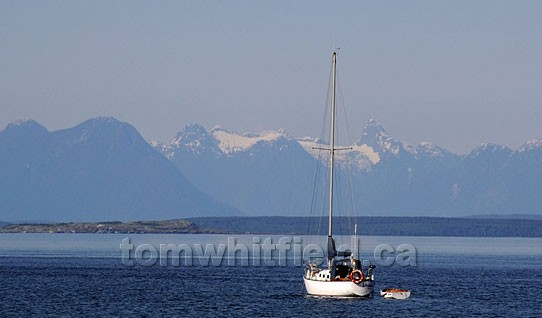 Photo of Coast Mountains On Mainland Bc Across From Nanoose Bay Area