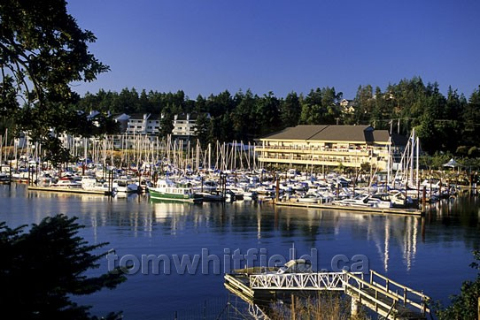 Photo of Fairwinds Marina
