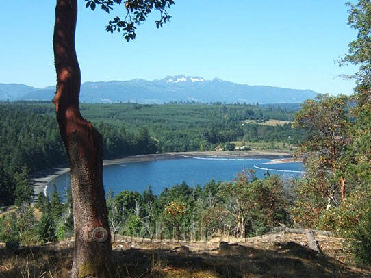 Photo of Looking Across Northwest Bay To Mount Arrowsmith