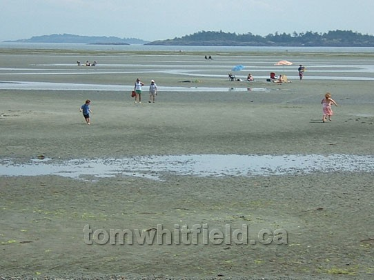 Photo of World Class Rathtrevor Beach At Low Tide