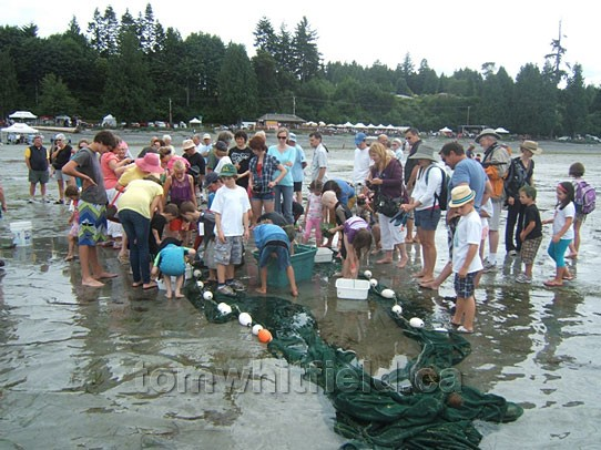 Photo of Beach Seining