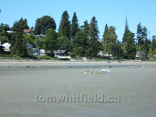 Photo of Eaglcrest Beach At Low Tide