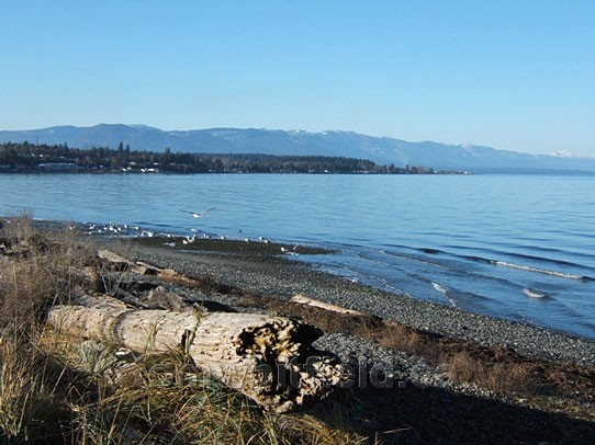 Photo of Qualicum Beach In January