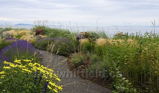 Photo of Qualicum Beach Waterfront Garden Bliss