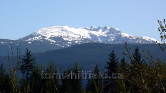 Photo of Mt. Arrowsmith