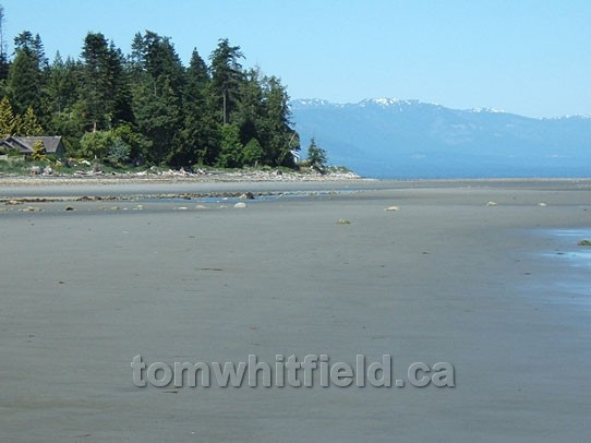 Photo of Eaglecrest Beach At Low Tide