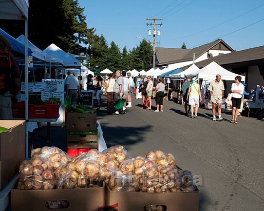 Photo of Farmer's Market On Saturday Morning