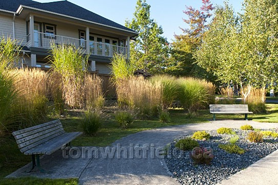 Photo of Qualicum Beach Walking Friendly Pathways